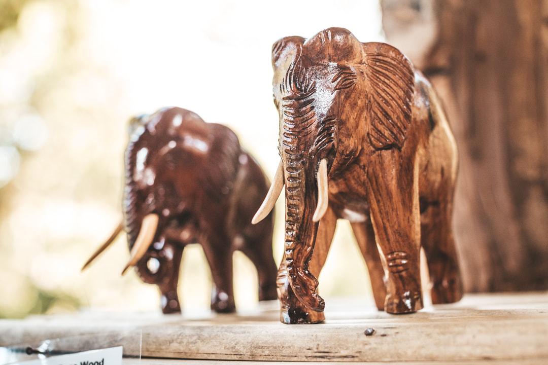 activities souvenirs shop - Mekong elephant park laos