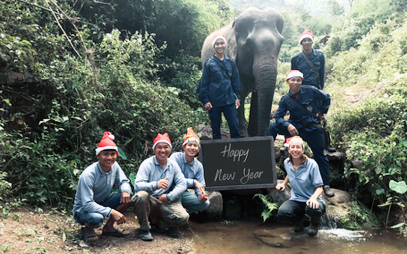 Happy new year from mekong elephant park