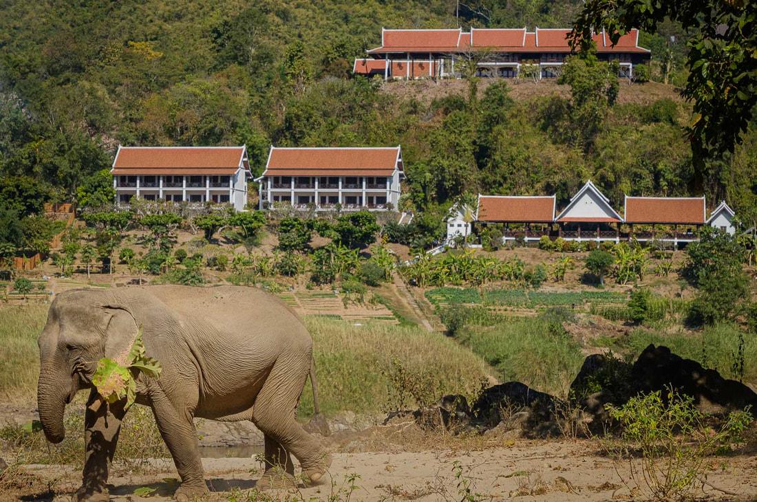 View of Hotel Sanctuary Pakbeng Lodge